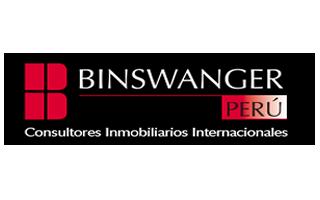 logo_binswanger